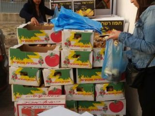 Maccabi World Union (MWU) - Community Uplift - packing food-