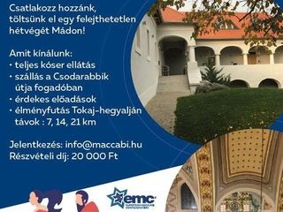 wonder rabbit run by maccabi vac hungary - Wonder Rabbit Run by Maccabi VAC Hungary
