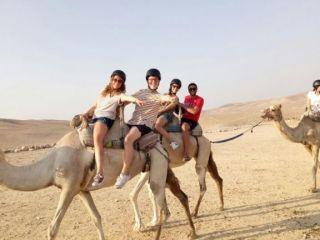 תכניות לישראל - תכניות ארוכות - 6-10 חודשים - negev tour-