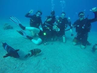 Israel Programs Department - Long Term Programs - scuba course-