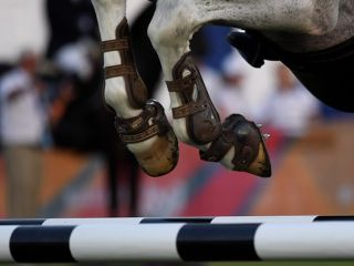 Sport Department - Maccabiah - equestrian-
